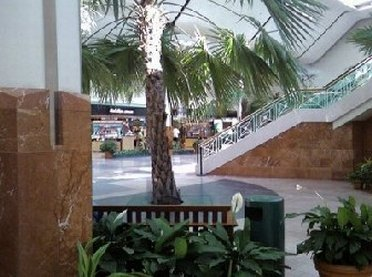 Inside Cherry Hill Mall